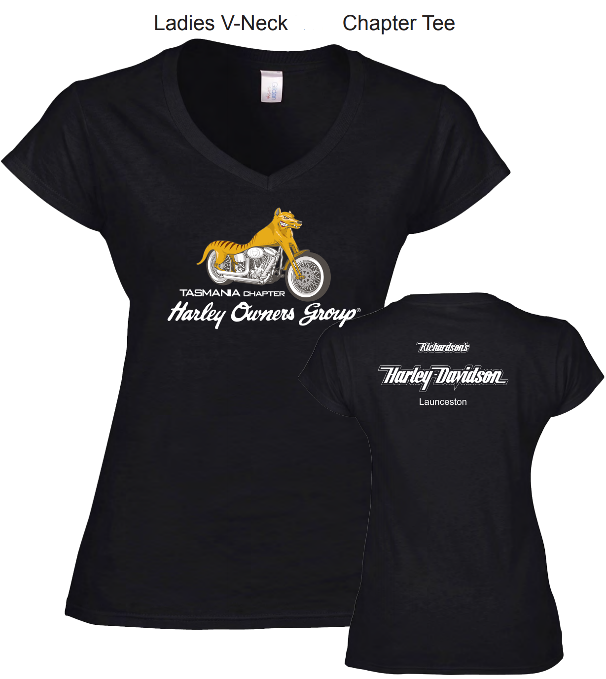 Ladies Tee Shirt Image